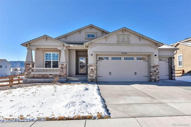 17914 Gypsum Canyon Court, Monument, CO 80132 (#8143065) :: The DeGrood Team