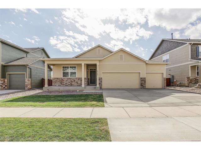 5835 Echo Park Circle, Castle Rock, CO 80104 (#8147665) :: The Peak Properties Group