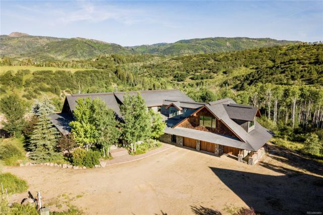 50400 Smith Creek Road, Steamboat Springs, CO 80487 (#8152465) :: My Home Team