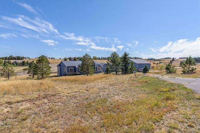 46432 Indian Brush Court, Parker, CO 80138 (#8152613) :: The DeGrood Team