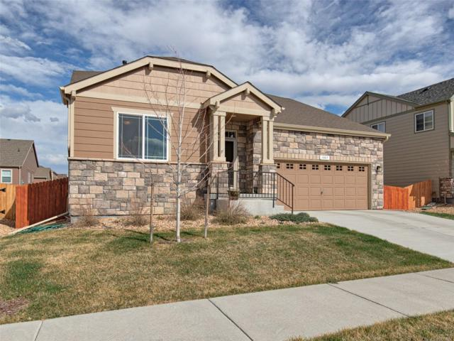 1007 Sumner Way, Erie, CO 80516 (#8154090) :: The Pete Cook Home Group