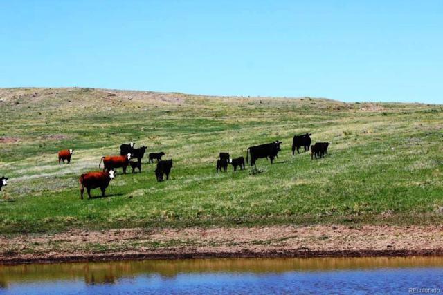 County Road 77, Kiowa, CO 80808 (#8155762) :: The DeGrood Team