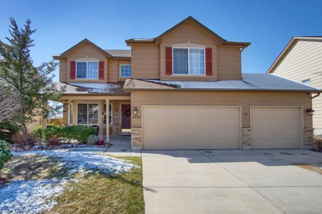 6635 Cabin Creek Drive, Colorado Springs, CO 80923 (#8156011) :: Wisdom Real Estate