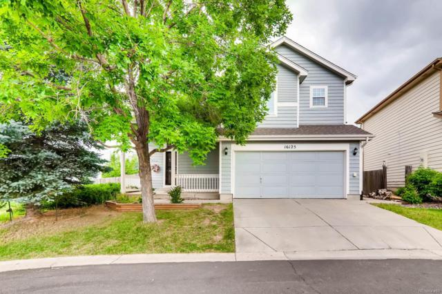 16125 Peregrine Drive, Parker, CO 80134 (#8158423) :: The DeGrood Team