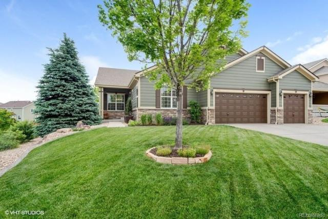 7224 Calcite Court, Castle Rock, CO 80108 (#8160864) :: 5281 Exclusive Homes Realty