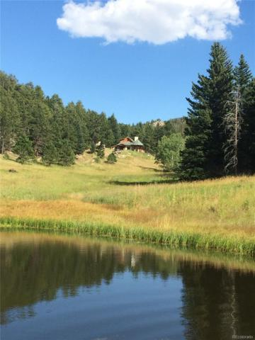 4333 Hell Canyon Road, Estes Park, CO 80517 (#8162554) :: My Home Team