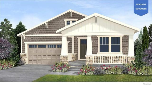 23879 E Caleb Place, Aurora, CO 80016 (MLS #8164011) :: Bliss Realty Group