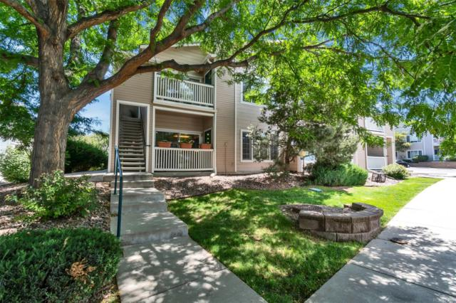 3847 Mossy Rock Drive #103, Highlands Ranch, CO 80126 (#8167050) :: HomeSmart Realty Group