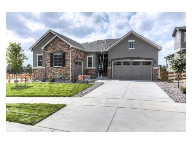 6637 S Catawba Way, Aurora, CO 80016 (MLS #8168685) :: 8z Real Estate