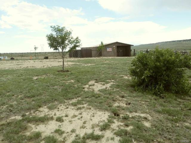5774 Antelope Road, Fountain, CO 81008 (MLS #8172230) :: 8z Real Estate