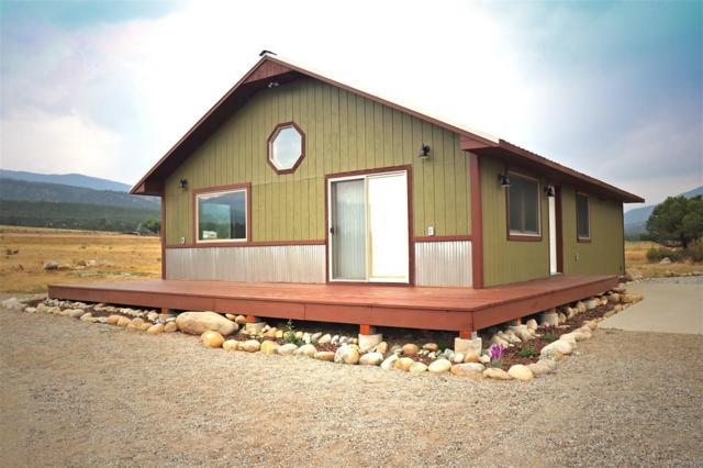 16970 County Road 369, Buena Vista, CO 81211 (MLS #8174313) :: 8z Real Estate