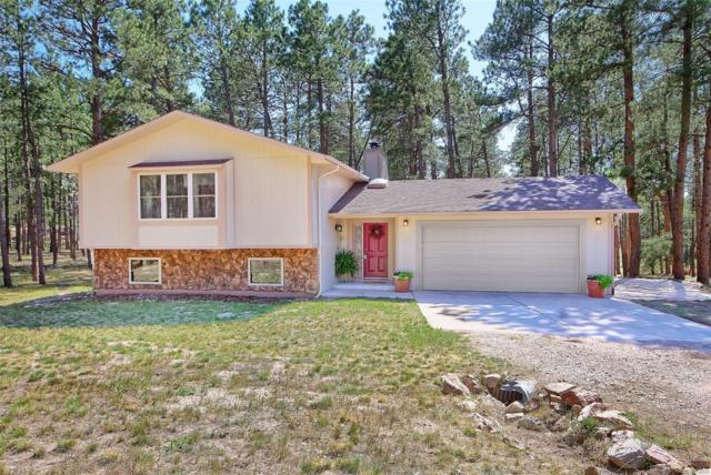 335 E Highway 105 Highway, Monument, CO 80132 (#8174389) :: Bicker Realty