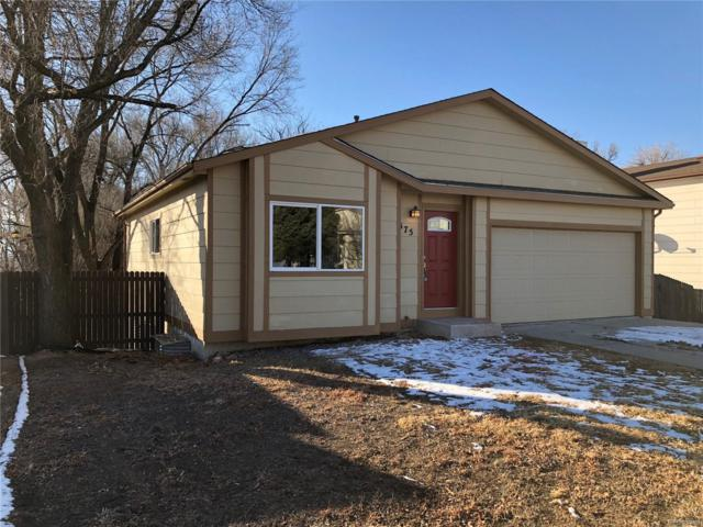 575 Blossom Field Road, Fountain, CO 80817 (#8174941) :: The DeGrood Team