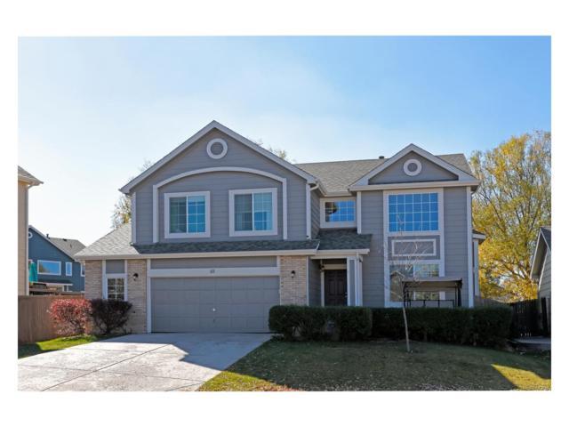 111 Hampstead Avenue, Castle Rock, CO 80104 (MLS #8174951) :: 8z Real Estate