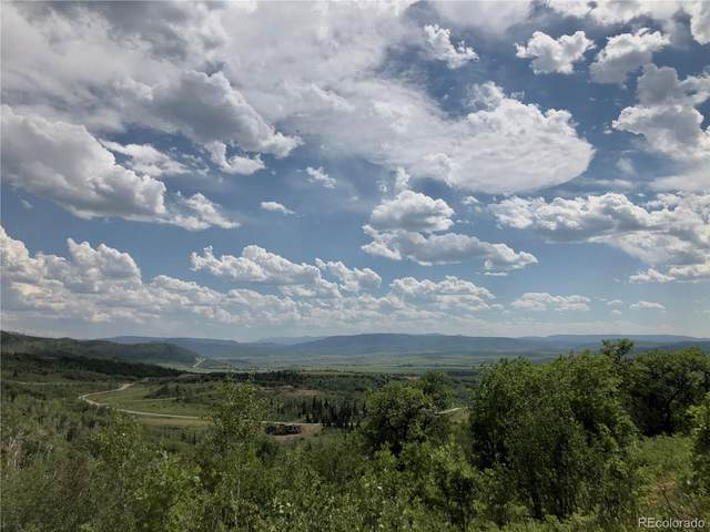 33990 Meadow Creek Drive, Steamboat Springs, CO 80487 (#8178892) :: THE SIMPLE LIFE, Brokered by eXp Realty
