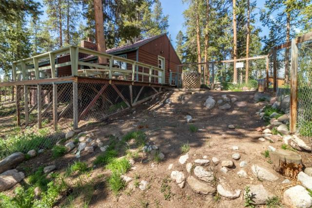 56 County Road 4602, Grand Lake, CO 80447 (MLS #8181577) :: 8z Real Estate