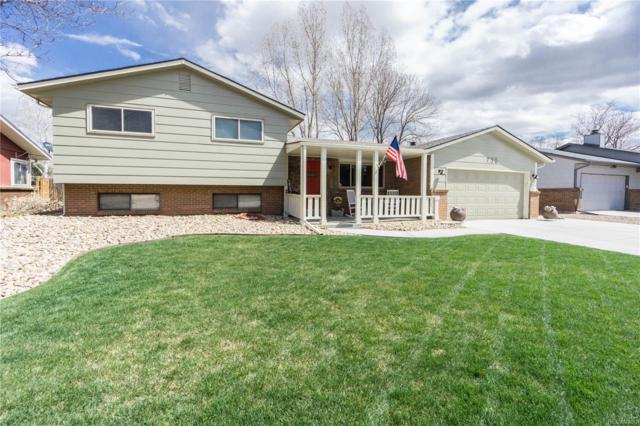 730 S 11th Avenue, Brighton, CO 80601 (#8182236) :: The Healey Group