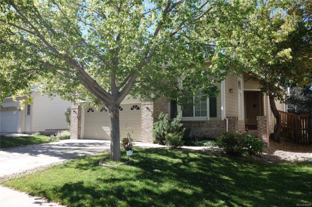 1474 Spotted Owl Way, Highlands Ranch, CO 80129 (#8182975) :: House Hunters Colorado