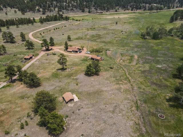 1410 County Road 90, Lake George, CO 80827 (#8184693) :: The DeGrood Team