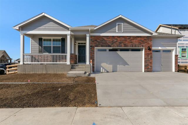 15643 Quince Street, Thornton, CO 80602 (#8184877) :: The HomeSmiths Team - Keller Williams