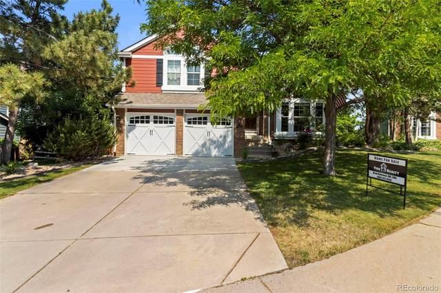 7445 Shoreham Place, Castle Pines, CO 80108 (#8187243) :: Venterra Real Estate LLC