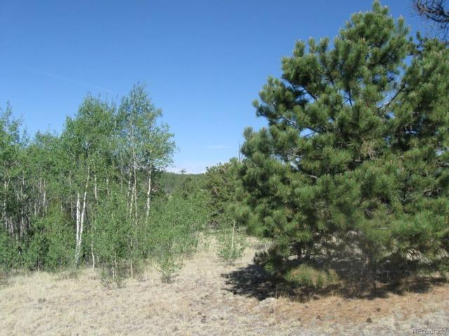 72 Houma Way, Como, CO 80432 (#8187342) :: Compass Colorado Realty