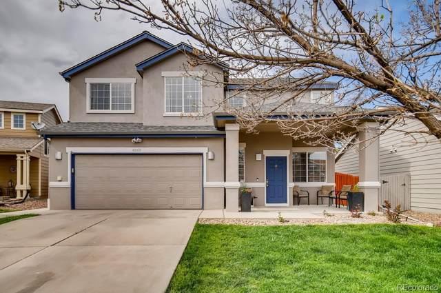 4869 Thorndike Avenue, Castle Rock, CO 80104 (#8190217) :: The Peak Properties Group