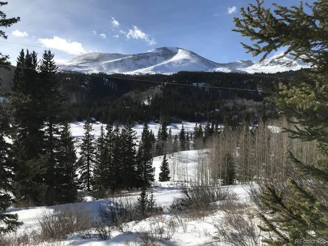 232 Titmouse Drive, Alma, CO 80420 (#8191482) :: Colorado Home Finder Realty