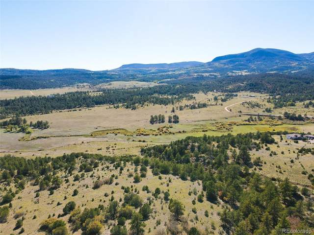 000 Rosebush Road, Canon City, CO 81212 (#8193055) :: Chateaux Realty Group