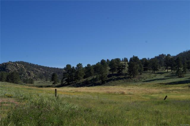 729 Valley Drive, Florissant, CO 80816 (#8193526) :: The Heyl Group at Keller Williams