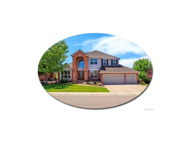 1486 Saltbush Ridge Road, Highlands Ranch, CO 80126 (MLS #8193726) :: 8z Real Estate