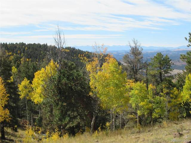 Unknown County Road 1, Cripple Creek, CO 80813 (#8195518) :: The DeGrood Team