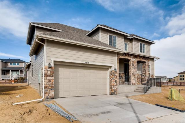 2614 Eagle Roost Place, Fort Collins, CO 80528 (#8197114) :: Wisdom Real Estate