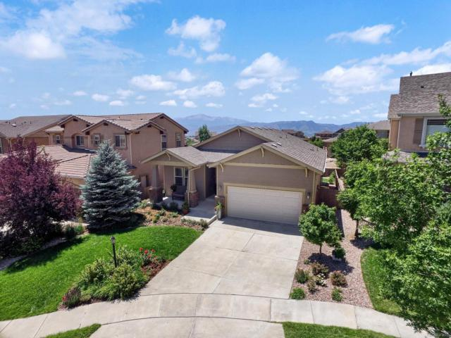 9574 Roxborough Park Court, Colorado Springs, CO 80924 (#8199430) :: Ben Kinney Real Estate Team