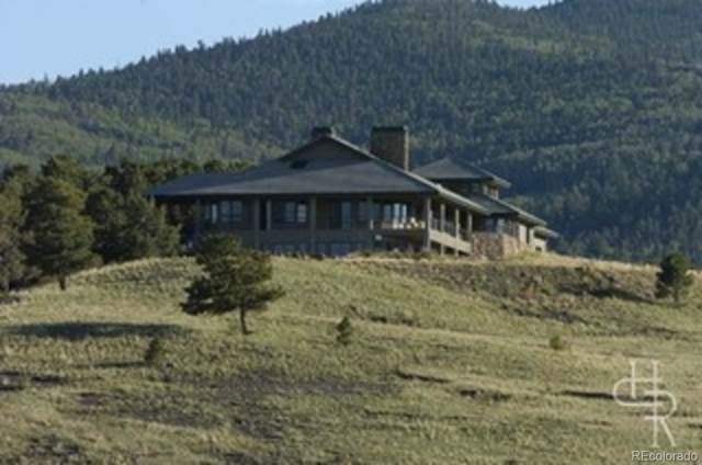 5681 Co Road 59, Guffey, CO 80820 (#8207380) :: The DeGrood Team