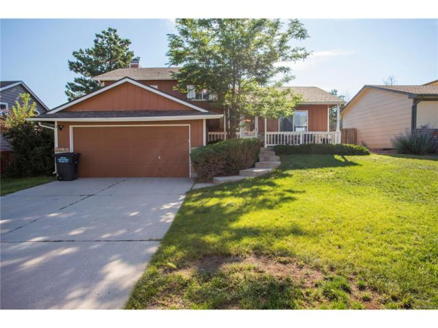 8175 Candleflower Circle, Colorado Springs, CO 80920 (MLS #8208459) :: 8z Real Estate
