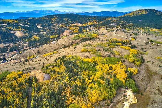 Parcel 7 Bald Mountain, Central City, CO 80427 (MLS #8211283) :: Bliss Realty Group