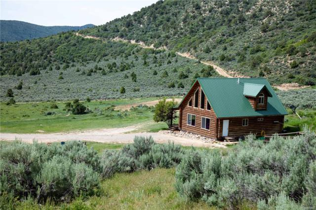 751 County Road 60, Meeker, CO 81641 (#8213529) :: The Griffith Home Team