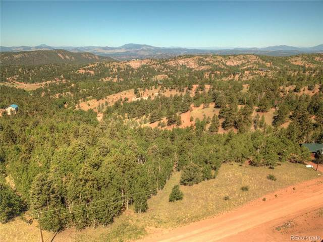 985 May Queen Drive, Cripple Creek, CO 80813 (#8217565) :: The DeGrood Team