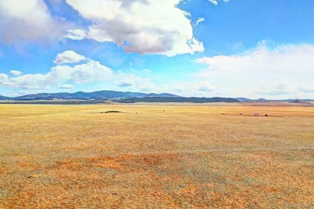 180 Stoll Mountain Road, Lake George, CO 80827 (#8218019) :: Symbio Denver