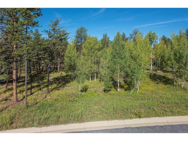 650 Pembrook Drive, Woodland Park, CO 80863 (MLS #8219853) :: 8z Real Estate