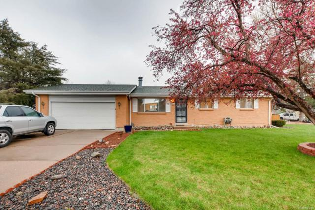4662 S Badger Court, Littleton, CO 80127 (#8230576) :: Wisdom Real Estate