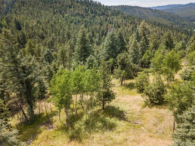 7132 Lynx Lair Road, Evergreen, CO 80439 (#8232086) :: Portenga Properties - LIV Sotheby's International Realty