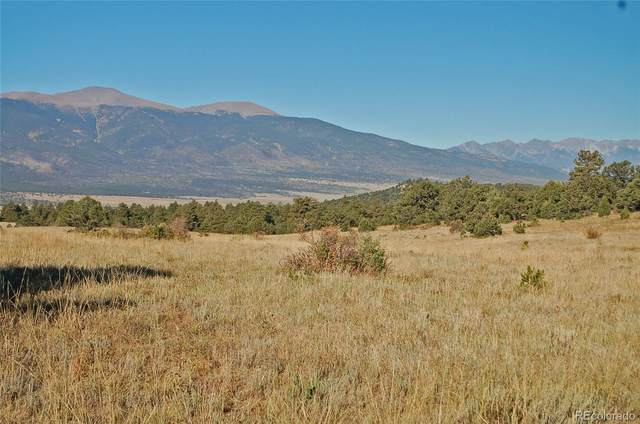 Pheassant Loop, Westcliffe, CO 81252 (#8236605) :: The DeGrood Team