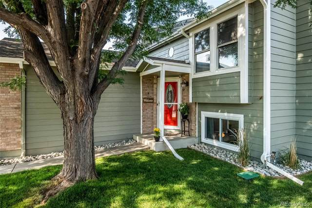 9125 W 95th Avenue, Westminster, CO 80021 (MLS #8236863) :: 8z Real Estate