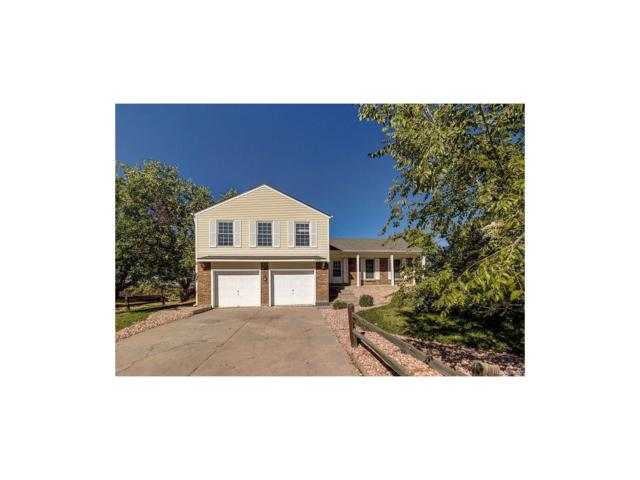 11341 Brownstone Drive, Parker, CO 80138 (#8238575) :: The Dixon Group