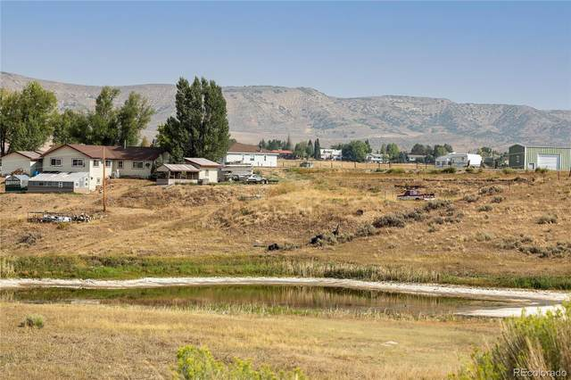 34467 County Road 53, Hayden, CO 81639 (#8240976) :: Own-Sweethome Team