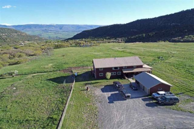 19561 Kimball Creek Road, Collbran, CO 81624 (#8245794) :: The DeGrood Team
