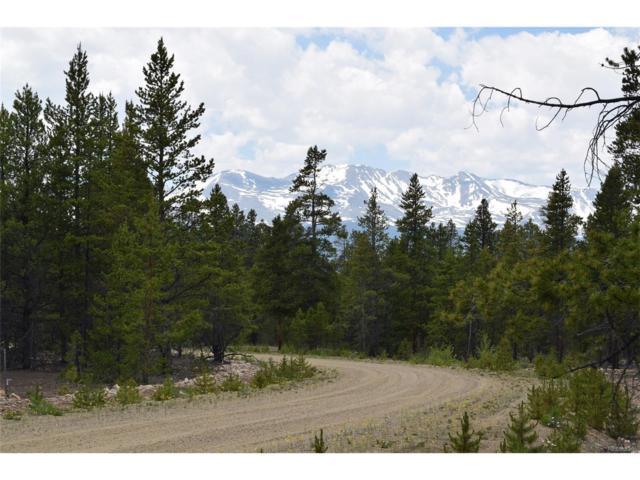 201 Snowshoe Rabbit Drive, Leadville, CO 80461 (MLS #8246554) :: 8z Real Estate