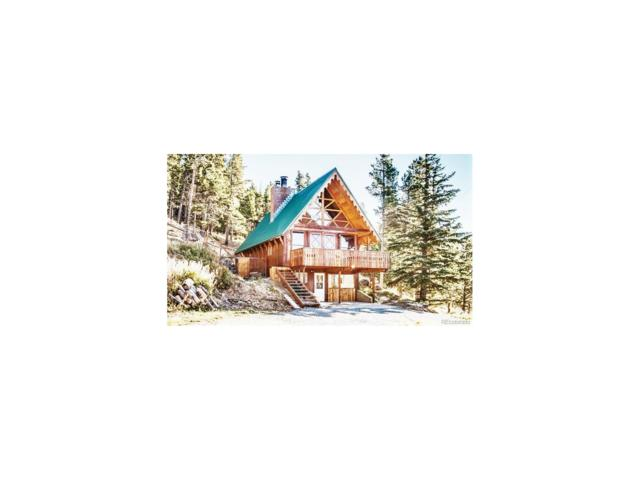 263 Texas Drive, Idaho Springs, CO 80452 (MLS #8246884) :: 8z Real Estate